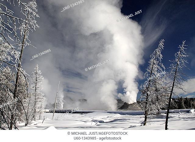 Castle Geyser erupts under a bright winter sky at Yellowstone National Park