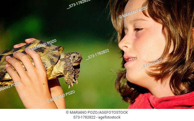 Girl and Russian tortoise / Testudo horsfieldii