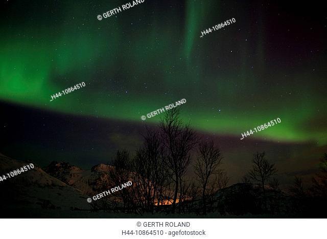 Henrikvikdalen, Norway, Scandinavia, polar light, Natural phenomenon, aurora, sky, dark, scenic, lights, north light, winter night, stars, mountains, snow