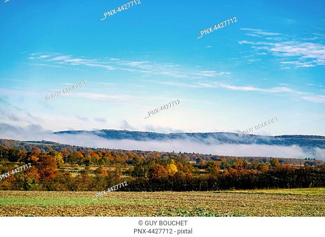 Europe, France, Bourgogne, Cote d'Or, Epoisses, autumn,view of the countryside with morning fog