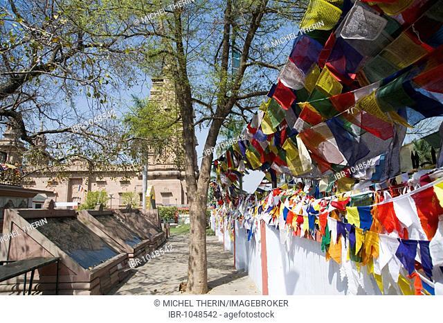Priest flags in the Dhammachakkapavattana Sutta Memorial Park, Sarnath, Uttar Pradesh, India, South Asia