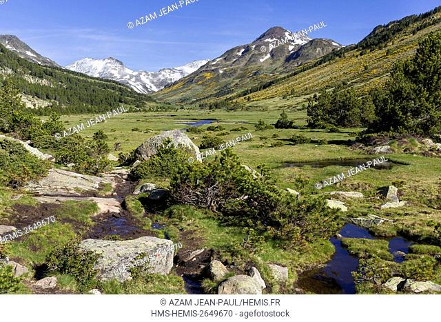 France, Pyrenees Orientales, Les Angles, the Tet valley