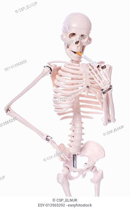 Skeleton smoking cigarette isolated on white