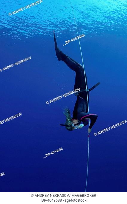 Freediving in the Red Sea, Egypt