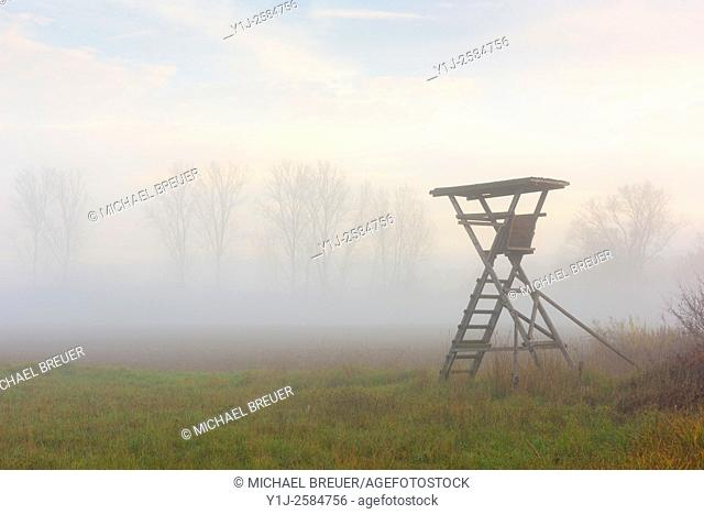 Hunting Blind in misty landscape at sunrise, Hesse, Germany, Europe