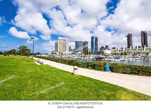 Downtown buildings viewed from Embarcadero Marina Park. San Diego, California, United States