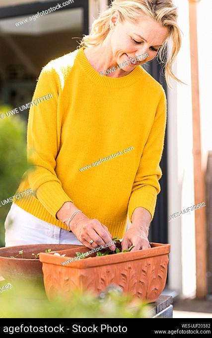 Smiling mature woman gardening on terrace