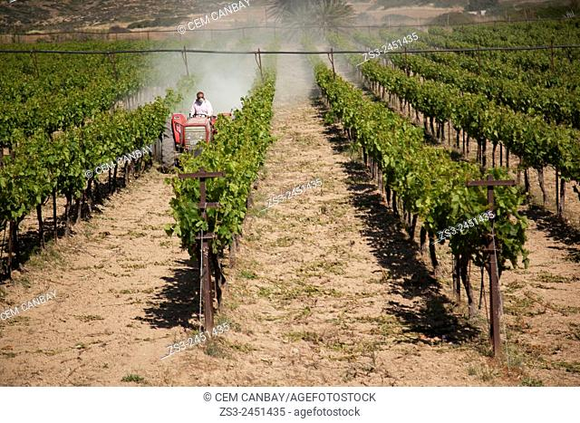 Agricultural vehicle spraying pesticide in a field, Lasithi Region, Crete, Greek Islands, Greece, Europe