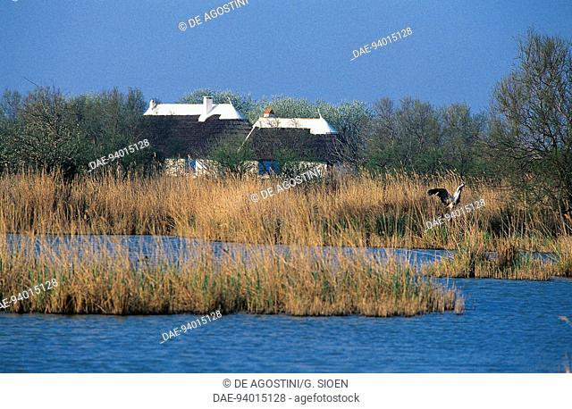 Typical houses and lagoon, Regional Nature Park of the Camargue (Parc naturel regional de Camargue), Provence-Alpes-Cote d'Azur, France