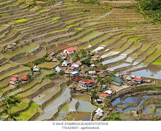 Amazing Batad, UNESCO World Heritage Site village, surrounded by rice terraces, Philippines
