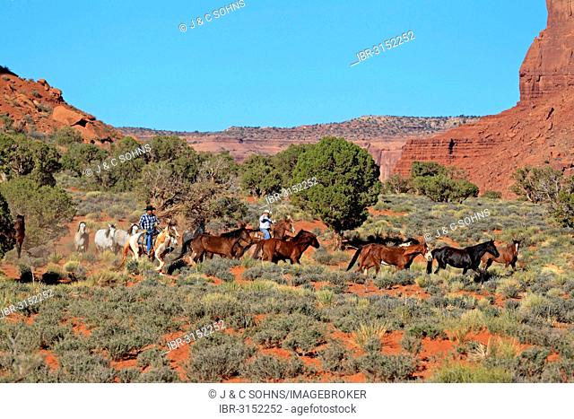 Navajo cowboys with Mustangs, Utah, United States