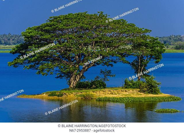 Tissa Lake, Tissamaharama, Southern Province, Sri Lanka