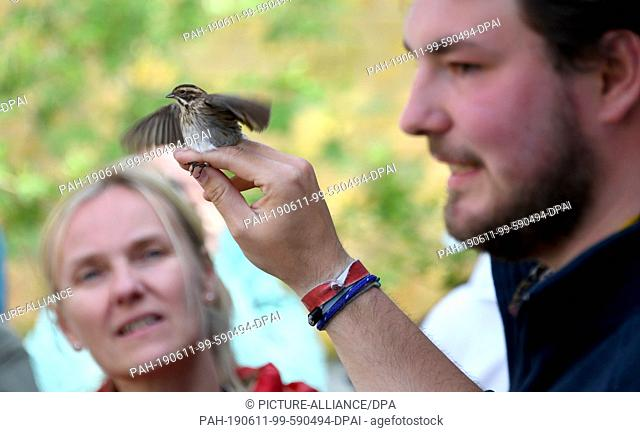 FILED - 14 May 2019, Schleswig-Holstein, Helgoland: Phil Keuschen, station assistant at the Institute for Bird Research, shows a captured bird during a guided...