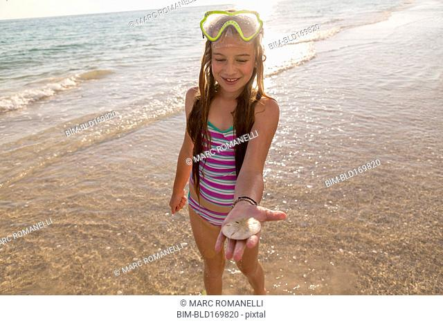 Caucasian girl holding sand dollar on beach