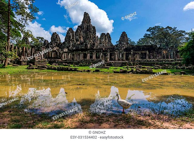 Duck at pond near Bayon Temple. The temple built as the official state temple of the Mahayana Buddhist King Jayavarman VII