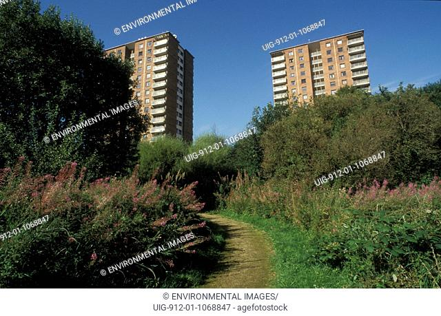 Urban Local Nature Reserve LNR near high rise flats, Paisley, Renfrewshire, Scotland