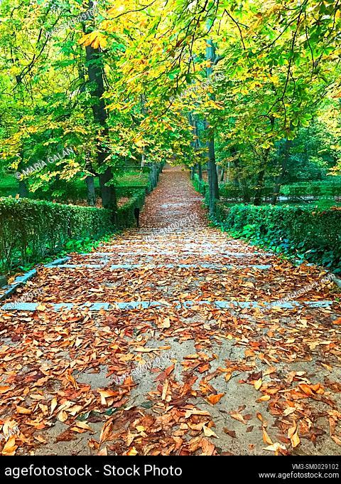 El Retiro park in Autumn. Madrid, Spain
