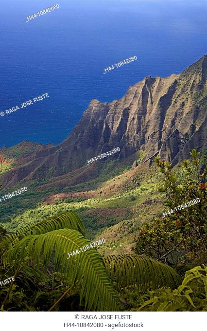 USA, America, United States, North America, Hawaii State, Kauai Island, Napali Coast, October 2007, Na Pali Coast, Sta