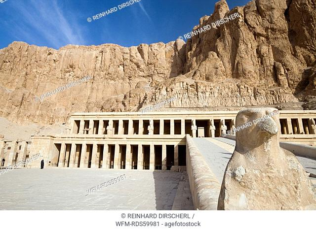 Horus Hawk at ascent of Mortuary Temple of Queen Hatshepsut, Luxor, Egypt