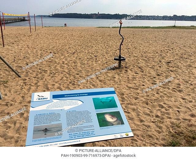 26 August 2019, Schleswig-Holstein, Flensburg: An information board on the subject of harbour porpoises and whale watching is located in the sand of the...