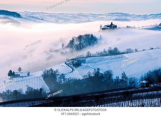Italy, Piedmont,Cuneo district, Langhe, the castle of Volta e the vineyards near Barolo during a winter morning