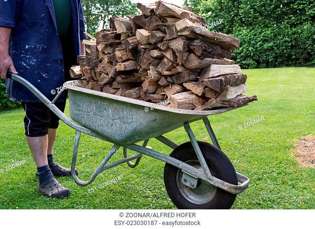 Bring dried firewood with wheelbarrow