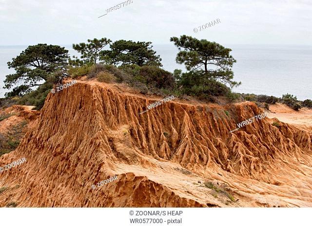 Rugged razor edged erosion in the sandstone on Torrey Pines hillside