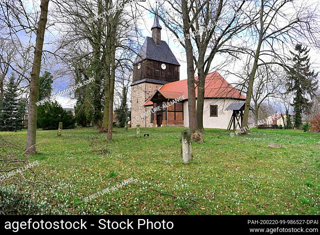18 February 2020, Brandenburg, Wandlitz: The snowdrops in the garden of the Evangelical Church are now and then illuminated by the sun thanks to the gaps in the...