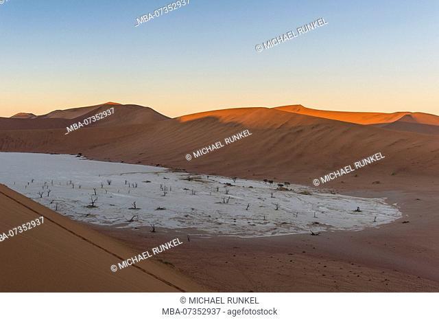 Deadvlei, an old dry lake in the Namib desert, Namibia
