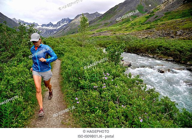 Woman running the Gold Mint Trail by Little Susitna River, Talkeetna Mountains near Hatcher Pass, Alaska, USA