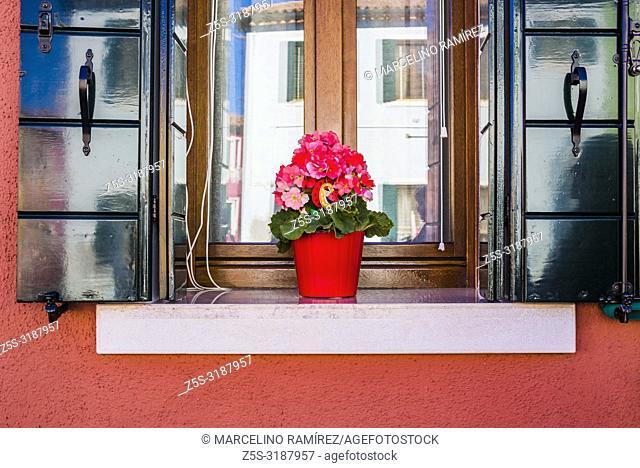 Flowerpots, detail of houses. Burano, Venice, Veneto, Italy, Europe