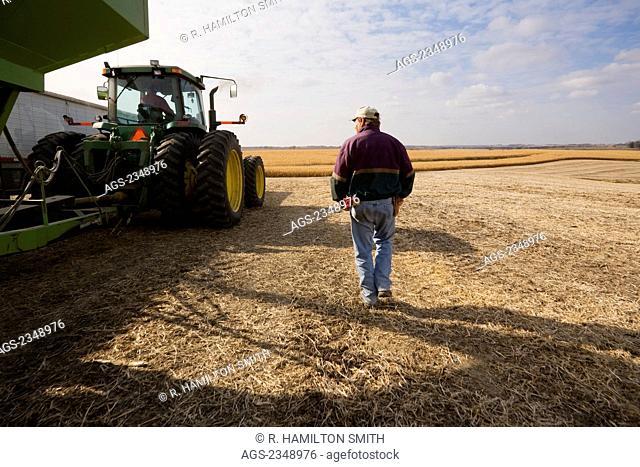 Agriculture - A farmer walks alongside a tractor and grain wagon during the Autumn grain corn harvest / near Northland, Minnesota, USA