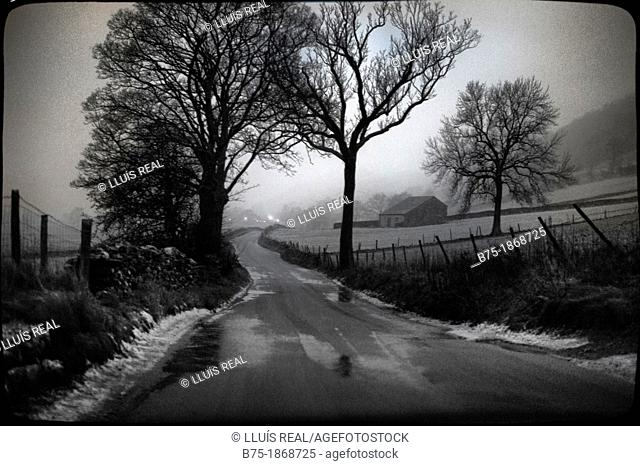 UK, England, North Yorkshire, Yorkshire Dales, rural road with trees and snow