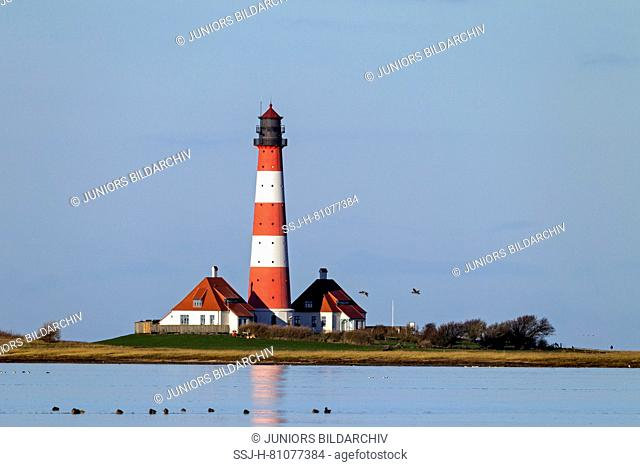 The lighthouse Westerheversand. Peninsula of Eiderstedt, North Frisia, Germany