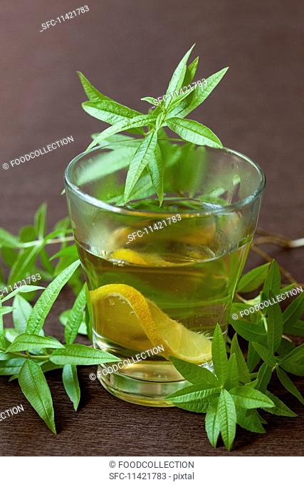 Lemon balm tea with lemon slices