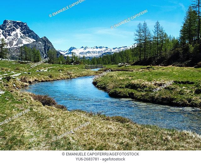 Rio Buscagna in Val Buscagna, Alpe Devero, Lepontine Alps, Piedmont, Italy