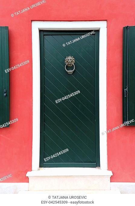 Lion head door knocker on residential entrance door