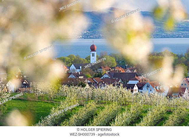 Germany, View of Kressbronn church and Lake Constance