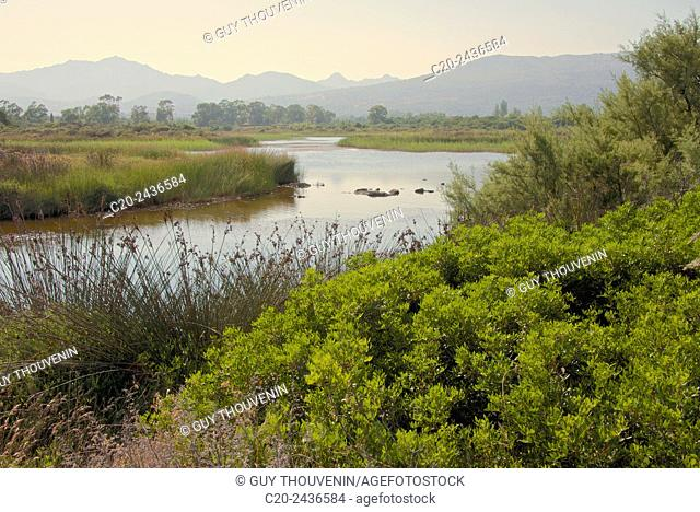 Typical Sardinian landscape, water pond and mountains in the background, Costa degli Oleandri, near Ottiolu harbour, Sardinia, Italy