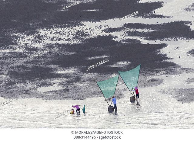 Chine, Chine du Sud, Province de Fujiang, Région de Xiapu, , Pêcheurs à pied, pêche de la crevette avec filet / China, Fujiang Province, Xiapu County