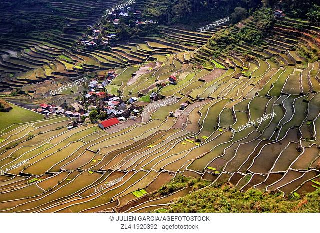 The famous Batad rice terraces amphitheater. Philippines, Luzon, Cagayan valley, Ifugao, Banaue, Batad. (/Julien Garcia)
