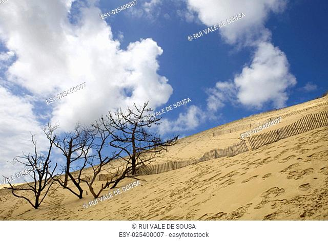 The Famous dune of Pyla, the highest sand dune in Europe, in Pyla Sur Mer, France