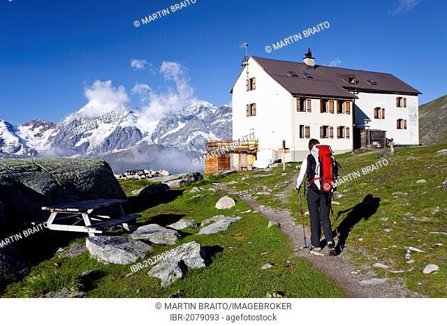 Hiker in front of the Duesseldorfhuette or Rifugio Serristori, view of Mt Ortler or Ortles, Mt Zebru and Mt Koenig or Gran Zebru, above Sulden, Solda, Italy