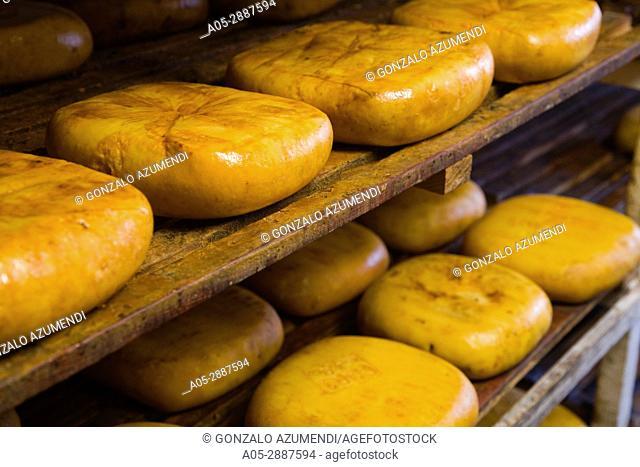Mahon Cheese. Menorca. Balearic Islands. Spain