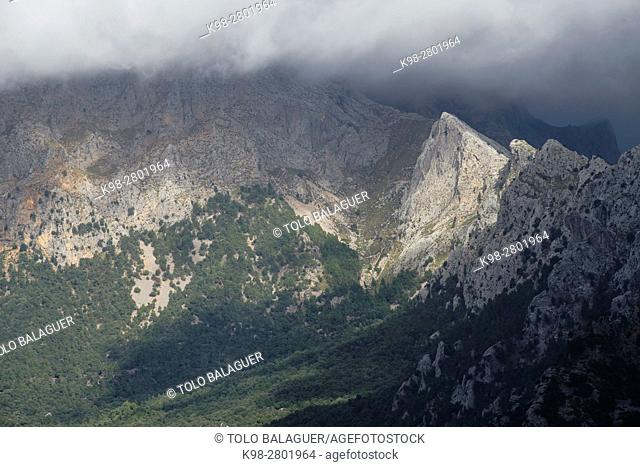 Penyal de Migdia and Son Torrella sierra, Cami De Ses Tres Creus, Sóller,Mallorca, balearic islands, spain, europe