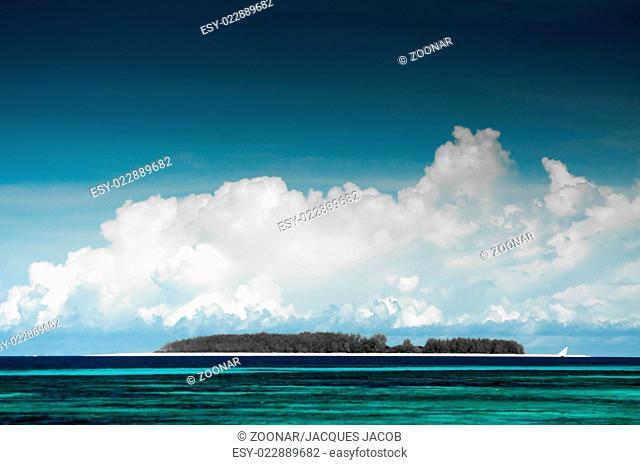 Small Island near Zanzibar