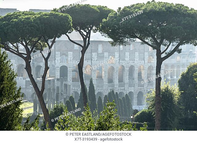 Early morning view across The Roman Forum towards the Colosseum, Rome, Italy