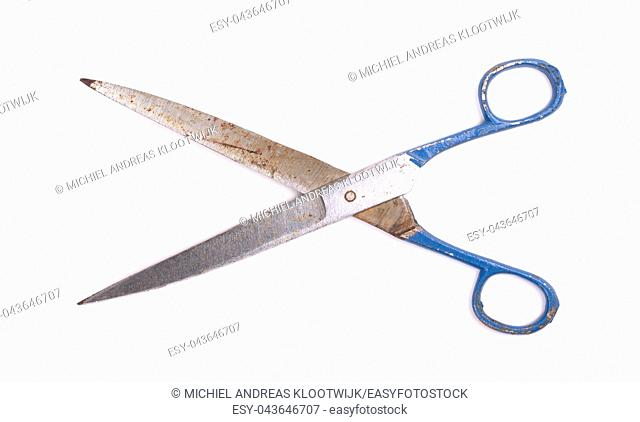 Large kitchen scissors isolated on a white background