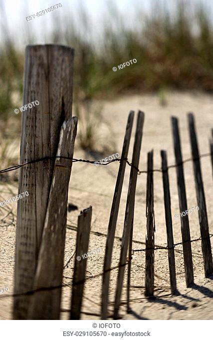 Weathered fence on sand dune on Bald Head Island, North Carolina