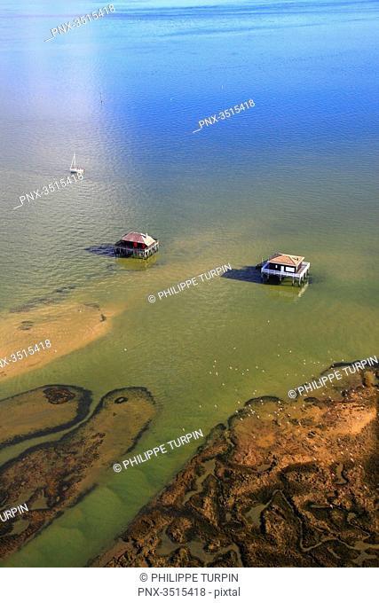 France, Gironde. Arcachon Bay. Bird Island. Cabin built on stilts